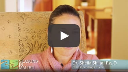 Dr. Sheila - What sets seasons apart
